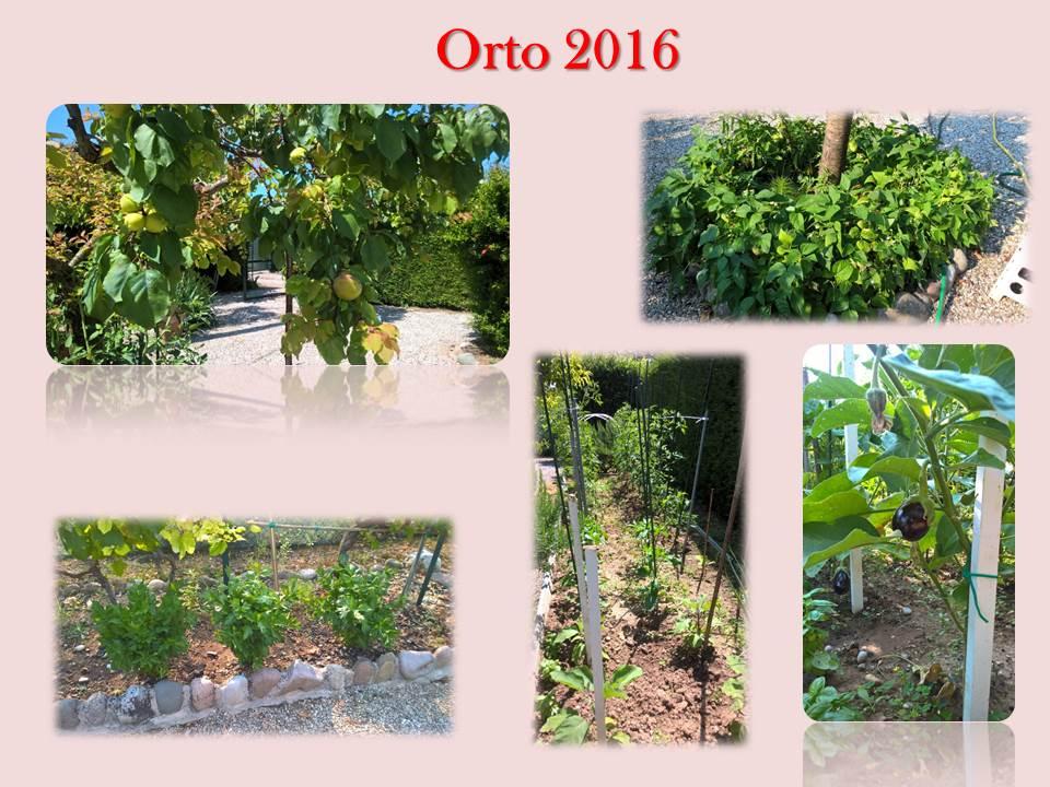 Orto 2016